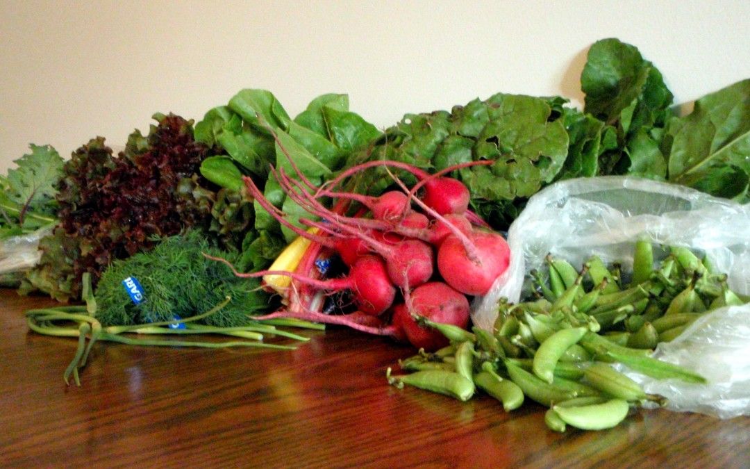 CSA Summer: Produce EVERYWHERE!